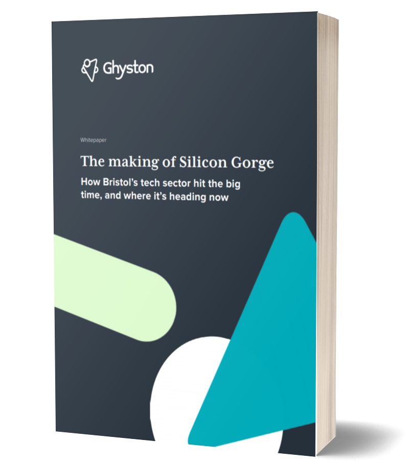 The making of Silicon Gorge